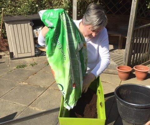 Gardening Wellcroft